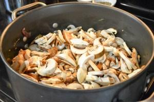 Mushroom Stew-12