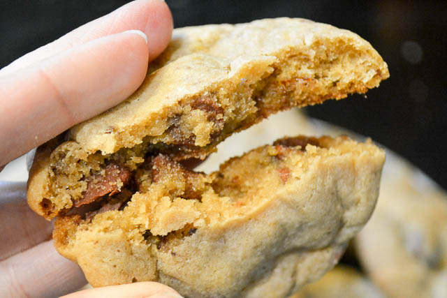 Orange Chocolate Chip Cookies-3