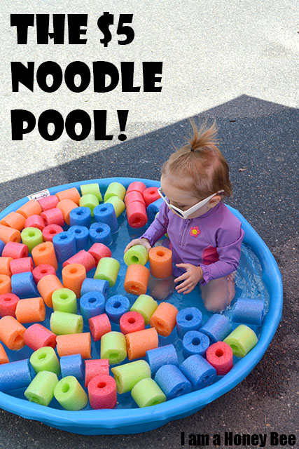 The $5 Noodle Pool Project