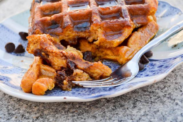 Chocolate Chip Pumpkin Waffles-1