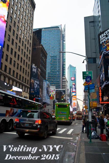 Visiting NYC 2015_01