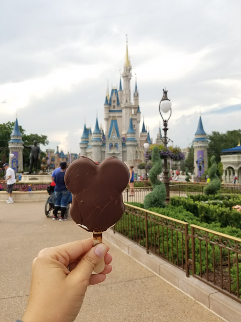 magic-kingdom-vacation_22