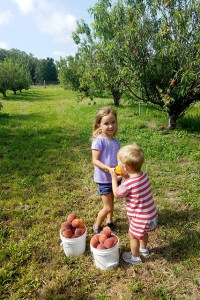 Boy and girl eating peaches with two buckets full of peaches next to them