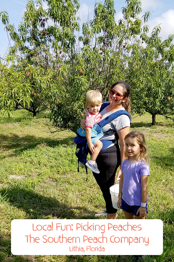 Mother and children enjoying a sunny day at peach picking farm