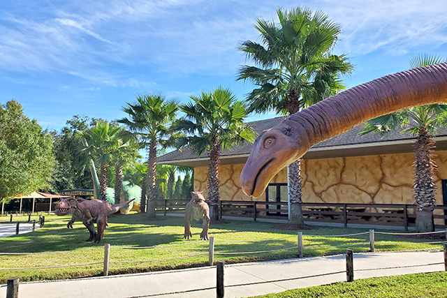 life sized dinosaur statues line path at dinosaur world