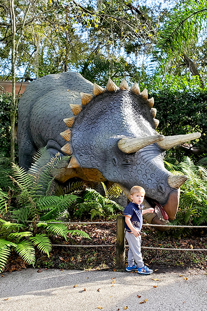 Boy stand in front of Triceritops model at Dinosaur World