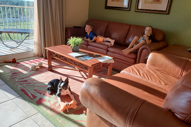 2 kids sitting on a brown letter sofa with a Boston Terrier in front of them with plush toy