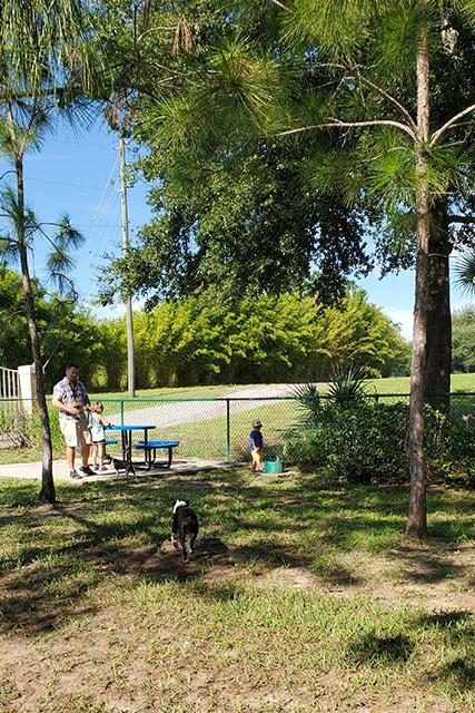 family at dog park