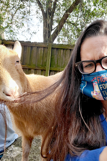 woman wearing a mask taking a selfie with a Nigerian Dwarf Goat that bit her hair