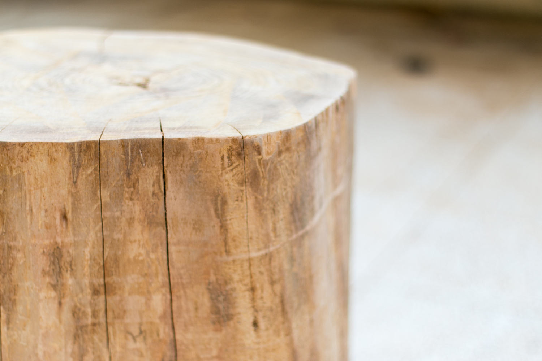 Cómo hacer una mesita con un tronco diy, paso 2, visto en
