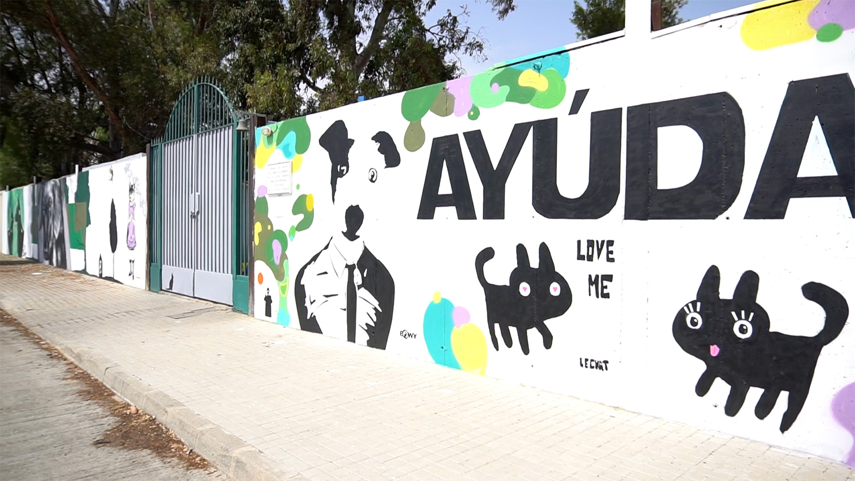 renovando la protectora de animales, muro de entrada, graffiti
