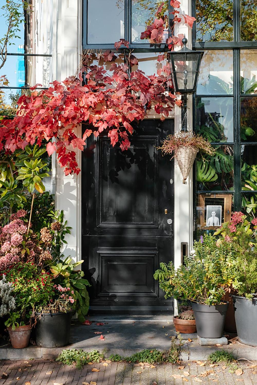 Cambios de otoño - exteriores