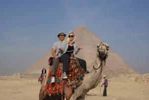 cairo camel