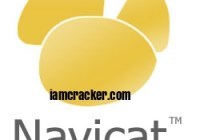 Navicat Premium 15.0.22 Crack Activation Registration Key |Latest|