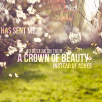 Beauty for Ashes {In My Year of Hope}