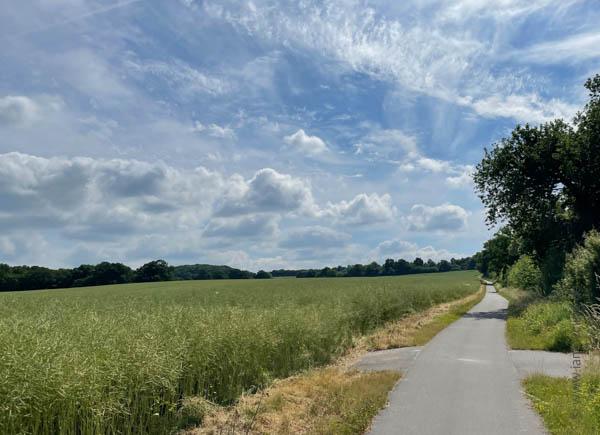 vor Ratzeburg - Ostsee-Tour - iamcycling.de