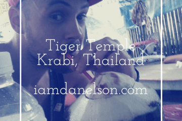 krabi-tiger-temple