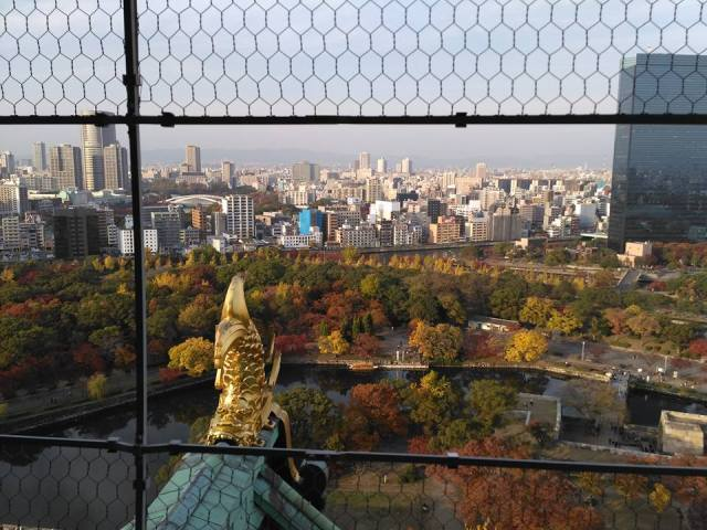 osaka-castle-view-from-top