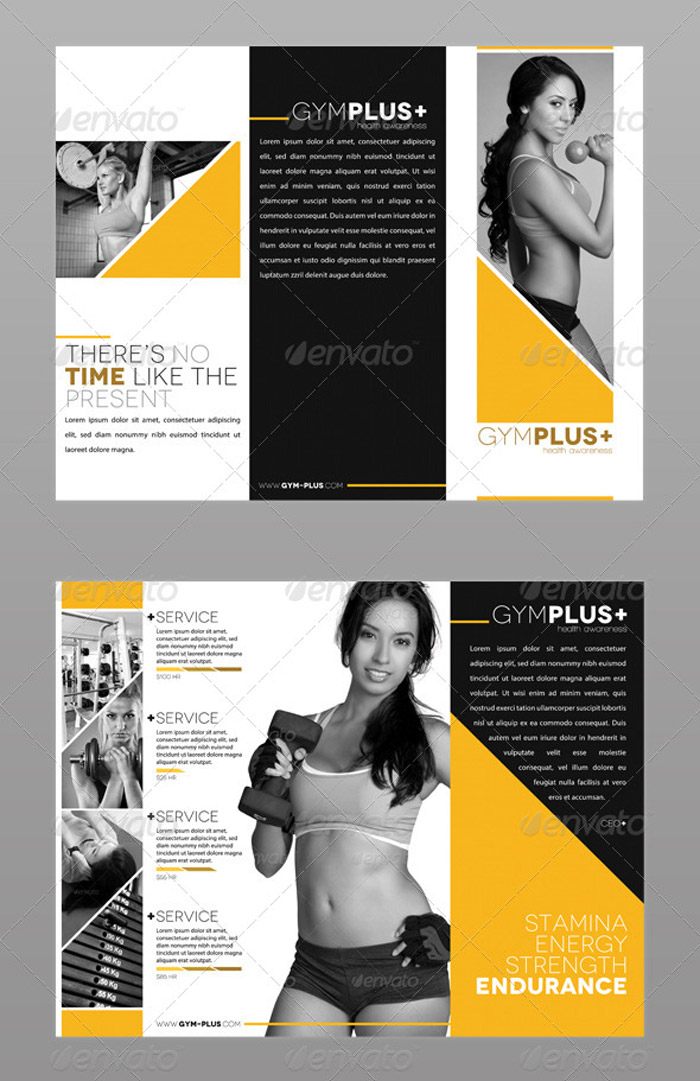20 Tri Fold Information Brochure Templates