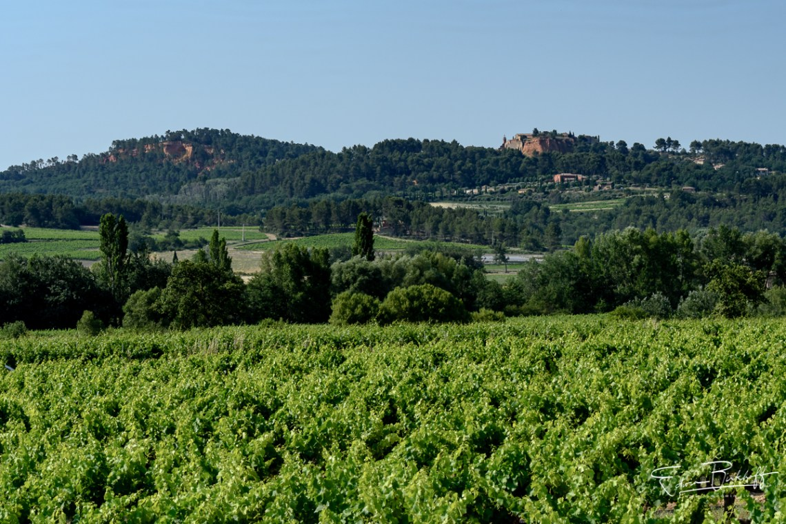 20170619_Provence_22215