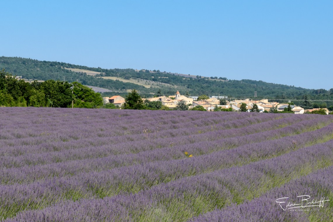 20170621_Provence_22240