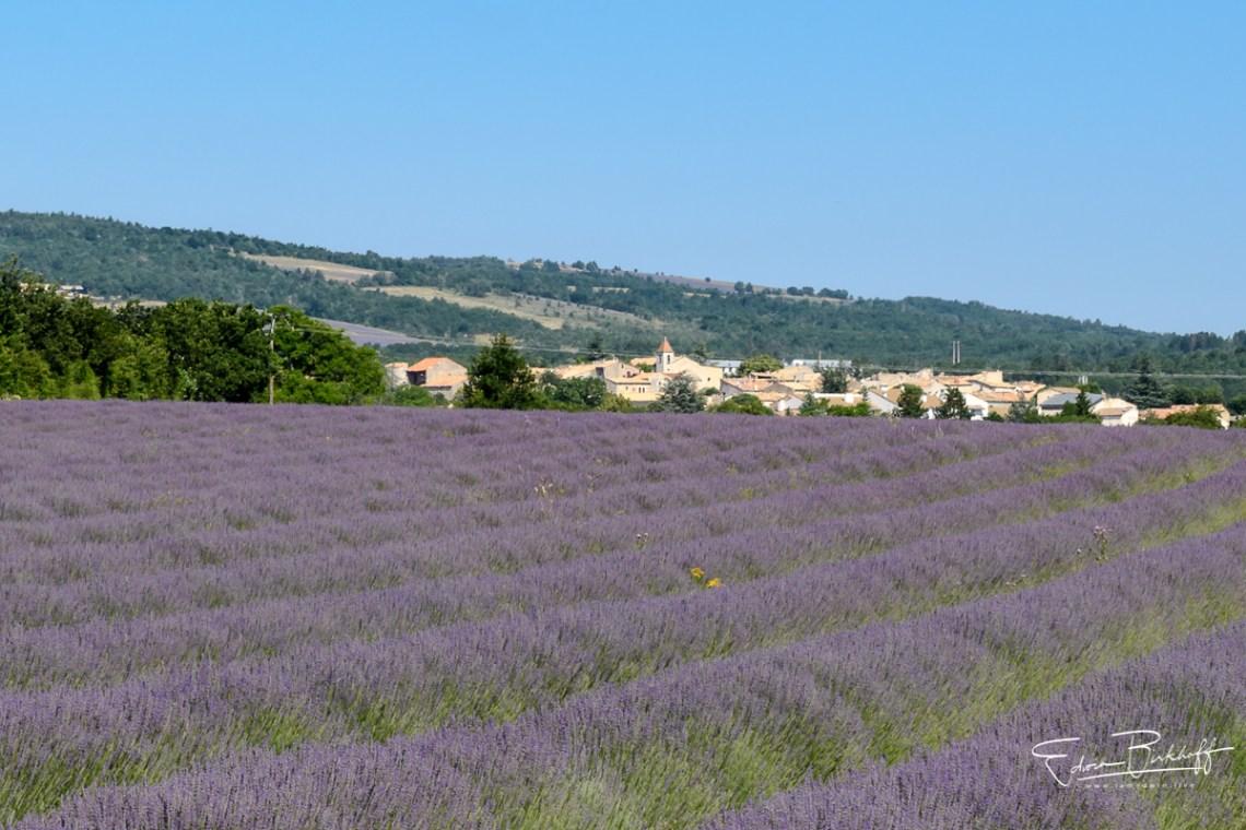 20170621_Provence_22240
