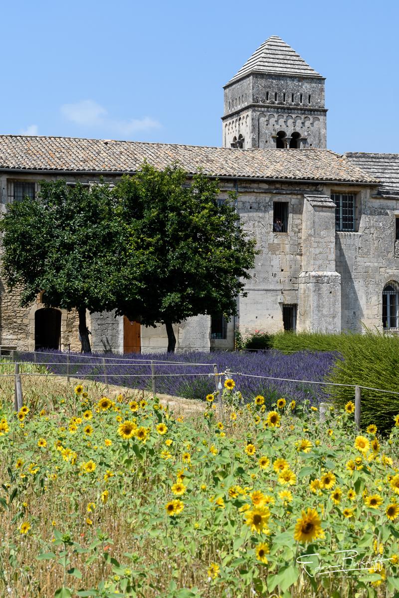 20170622_Provence_22553