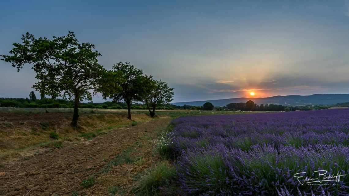 20170623_Provence_2415