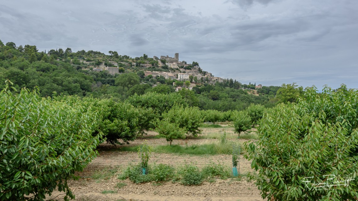 20170626_Provence_2754