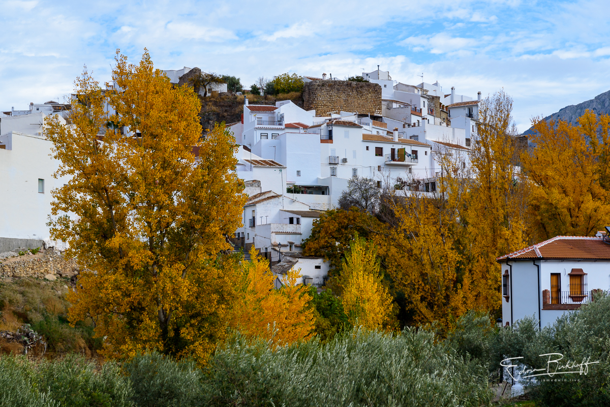 20171125_Andalusie_8025