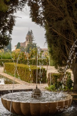 20171128_Andalusie_8519