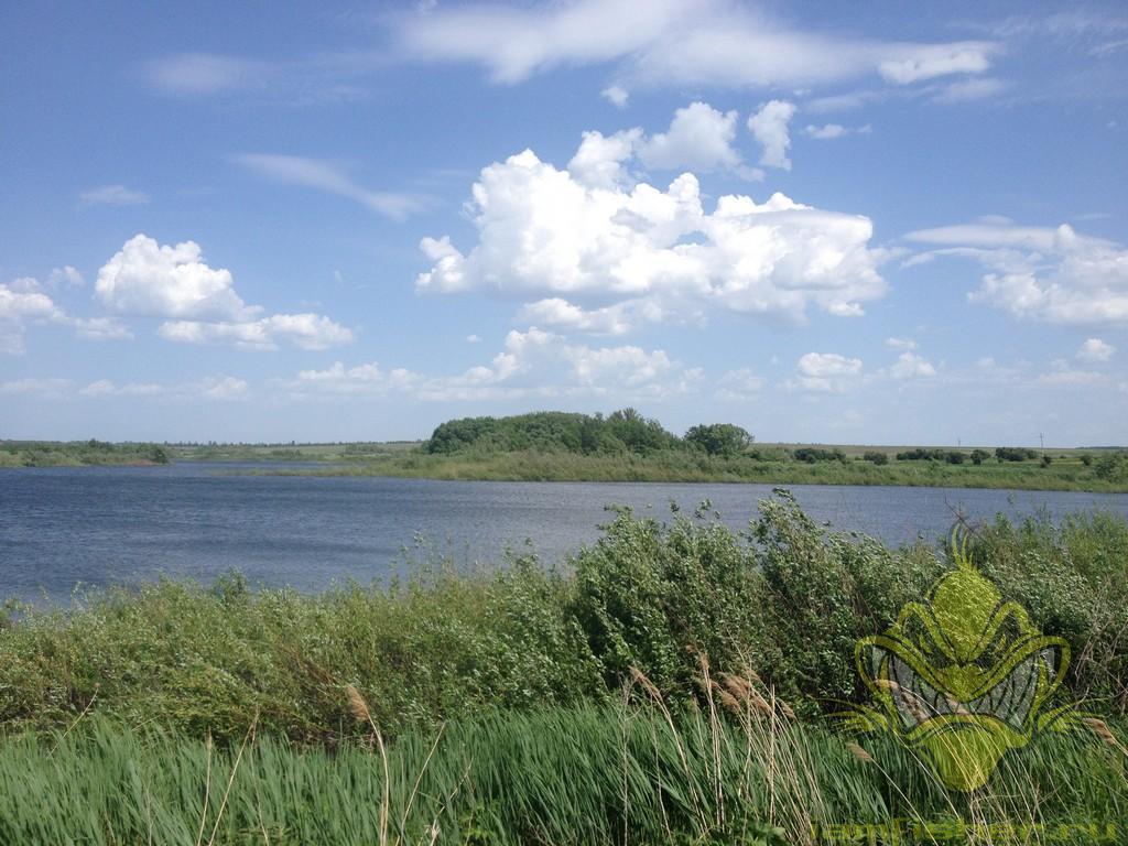 Козловский пруд