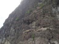 A rocky cliff face