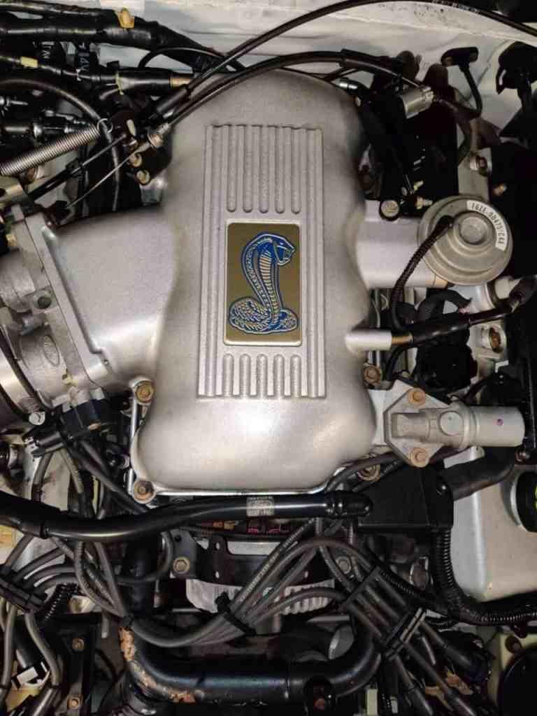 Corba V8 4.6 Liter Mustang Motor