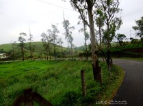 Vagamon - Elappara Road