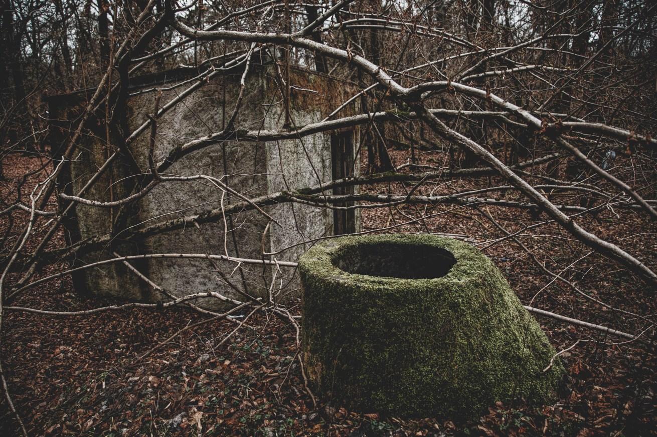 Waldhaus Niemitz (13)