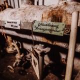 Lostplace-Thüringen-Porzellanfabrik-Lichte (25 von 286)