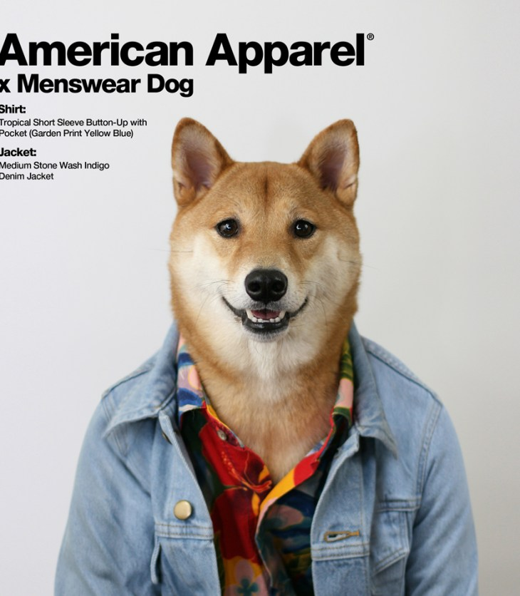 American Apparel x Menswear Dog by Jorge Gallegos manchic