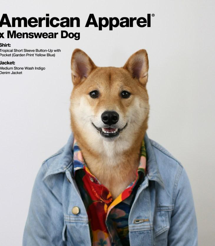 American Apparel x Menswear Dog by Jorge Gallegos manchic