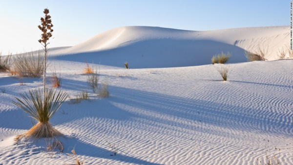 New Mexico, Las cruces, Heart of the Sands, Transverse Dunes and Yucca Plants, White Sands National Monument. (Photo by: Universal Images Group via Getty Images)