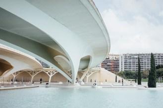 AMR_Calatrava Valencia03