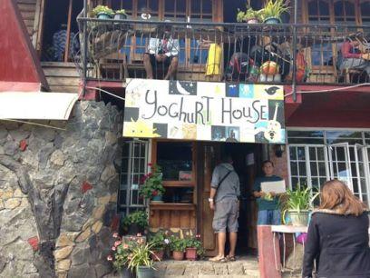 Yoghurt House