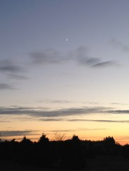 the tiny crescent moon in the sky above