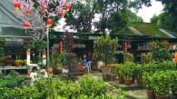 Leong Nursery