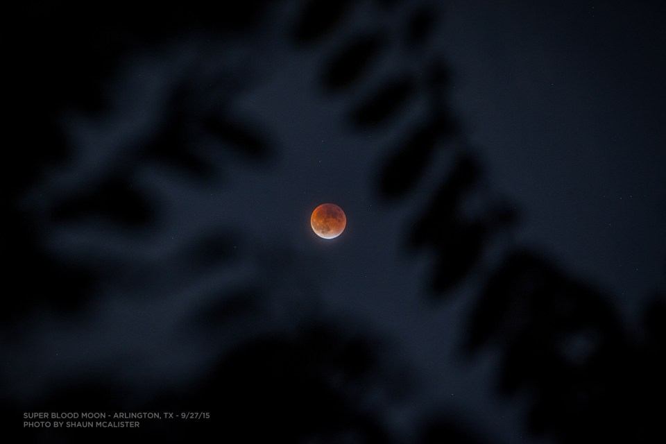 Super Blood Moon 2015 by Shaun McAlister