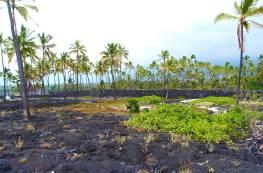 A visit to Pu`uhonua O Hōnaunau National Park (Place of Refuge) is one of the 7 Things You Must Do On The Big Island, Hawaii