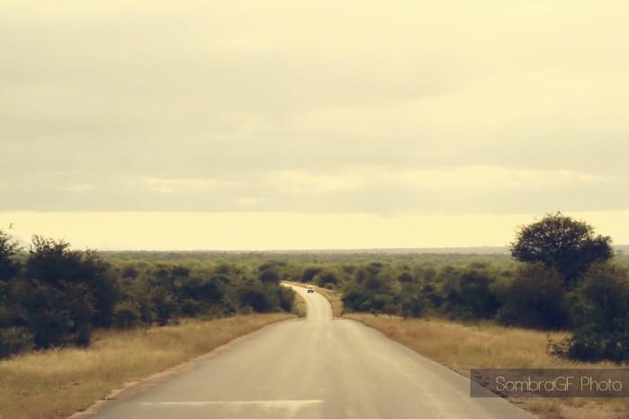 Road Kruger Park