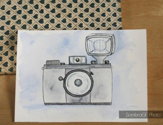 nueva cámara