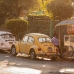 vocho vw Beetle mexicodf mexico escarabajo