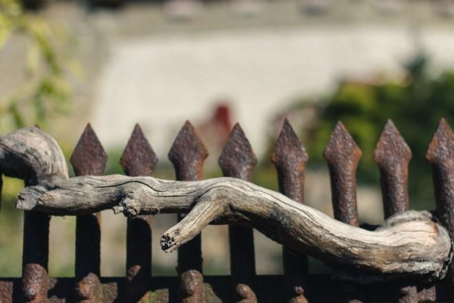 oldtown murten morat switzerland 35mm